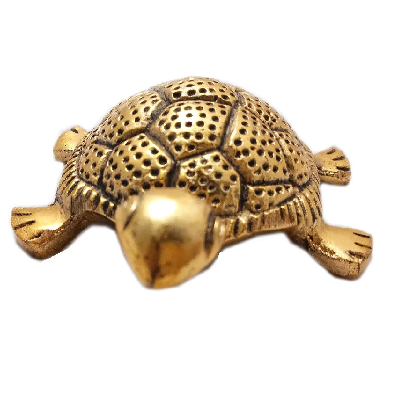 tortoise for good luck